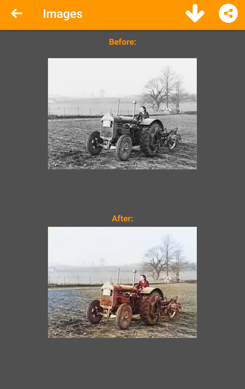 Black and White Photo Colorizer - Chromatix Screenshot 4