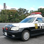 police car at National Diet of Japan in Tokyo, Tokyo, Japan