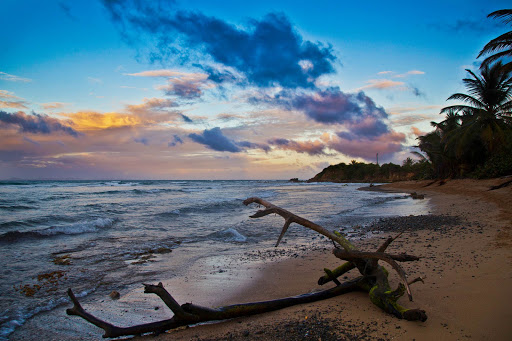 A pretty beach at sunset on Vieques Island in Puerto Rico.
