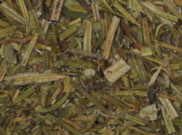 Yerba Santa Tea Recipe