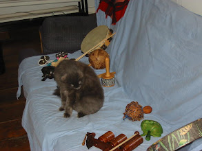 Photo: kizzy and instruments