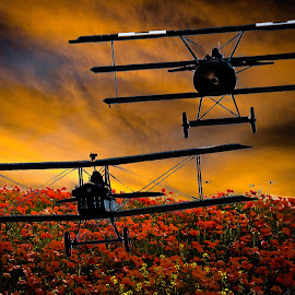 by Anthony P Morris - Digital Art Things ( 100years, ww1, remember, ww1iooyears, duxford, armastice )