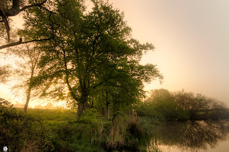 Photo: Just Another Misty Sunrise