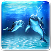 Sea Dolphin Live Wallpaper