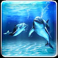 Sea Dolphin Live Wallpaper