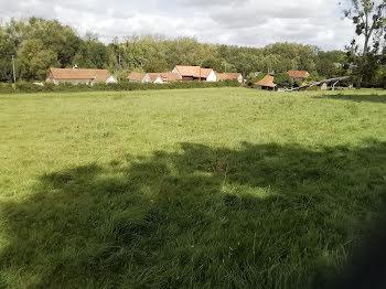 terrain à Vitz-sur-Authie (80)
