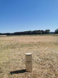 terrain à Vendeuvre-du-Poitou (86)