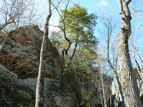 Photo: Cumberland Trail rocks