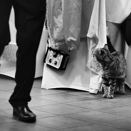 Wedding photographer Michał Gębal (michalgebal). Photo of 20.12.2017