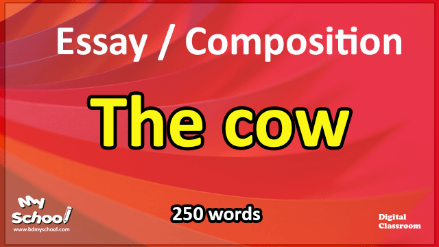 The cow-Essay