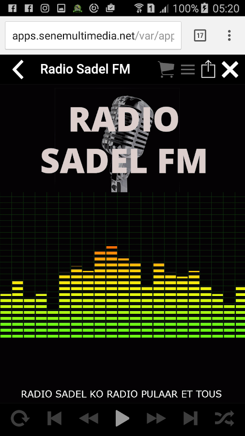 Sadel FM- screenshot