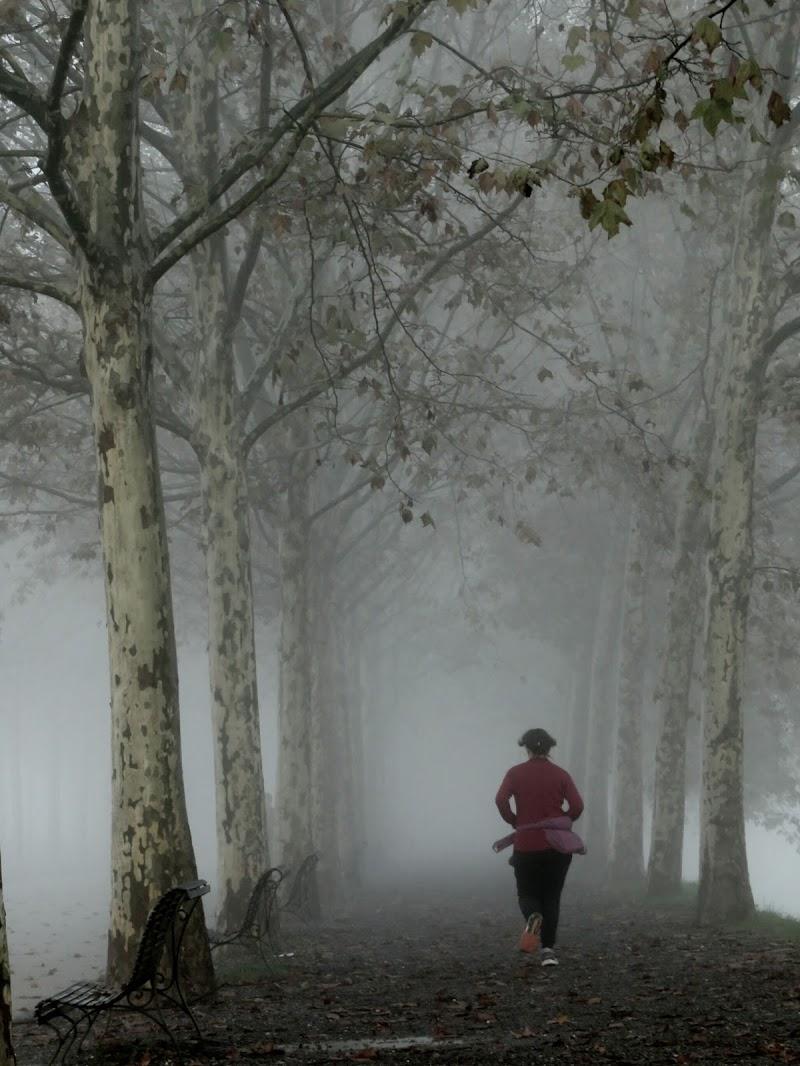 Donna che corre di Giorgio Lucca