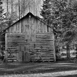 Old Barn In Hope by Patricia Phillips - Buildings & Architecture Other Exteriors ( alaska old structures barns hope )