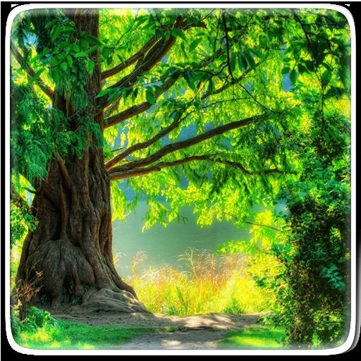 Green Nature Live Wallpaper Icon