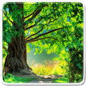Natureza Verde Papel De Parede icon