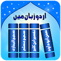 Urdu Islamic Books, Hadith icon