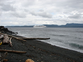 Photo: A cruise ship passing my camp site near Robson Bight.