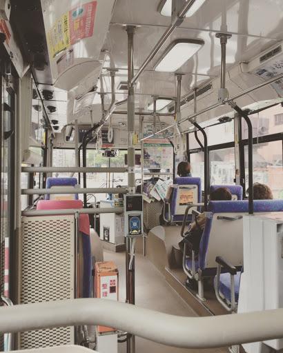 Bus to Meinohoma
