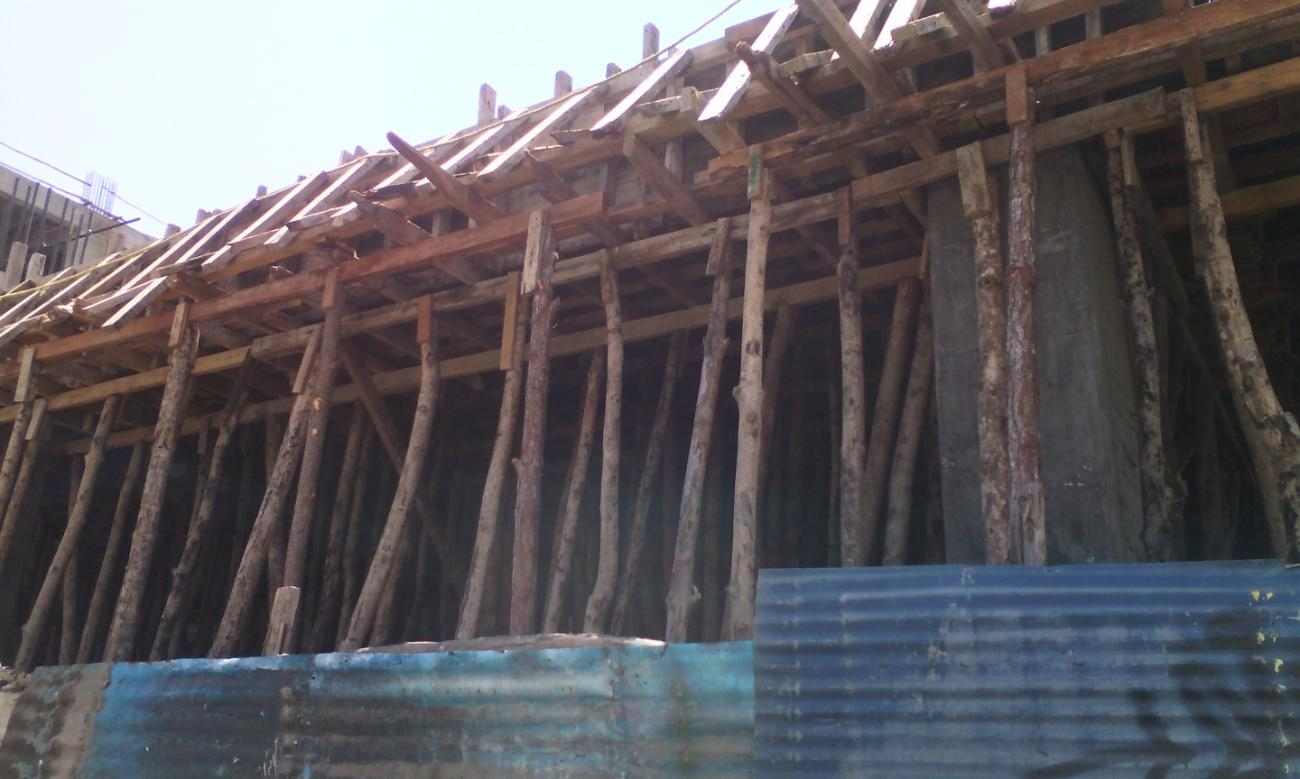 E:fotos madera y bosquesIMG_20160731_110348.jpg