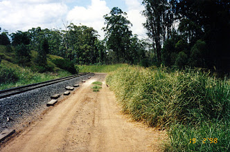 Photo: AUS-RY45 Australia - Railroads in Queensland. Vetiver used to stabilize a railroad service road