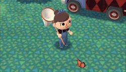 捕まえたい虫に近づいている画像