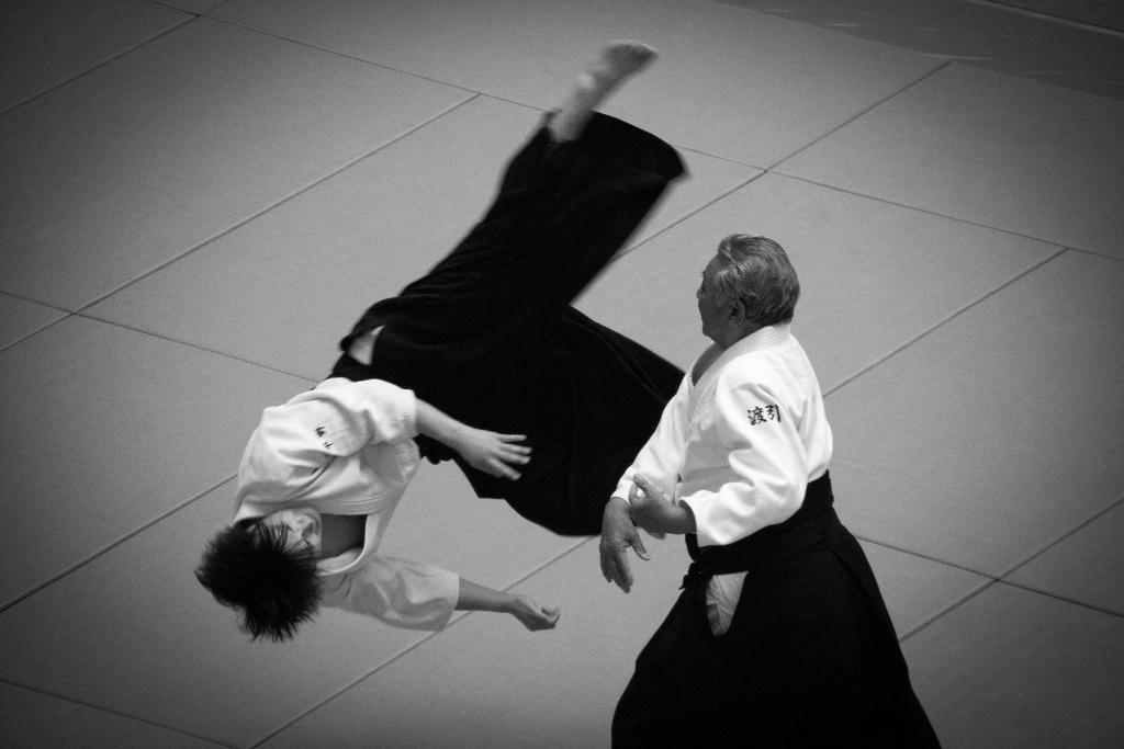 """Результат пошуку зображень за запитом """"aikido"""""""