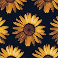 Sunflower Wallpapers 4K APK