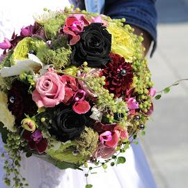 by Carola Mellentin - Wedding Other (  )