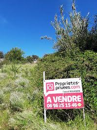 terrain à Limoux (11)