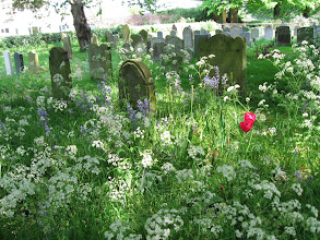 Photo: Cemetery at the Swaffham church.