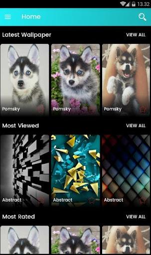 Pomsky Dog Wallpaper 10.0 Apk Download