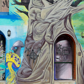 The Guardian of the Door! by Stavros Troullinos - Buildings & Architecture Other Exteriors ( spray, art, guardian, graffitti, city,  )
