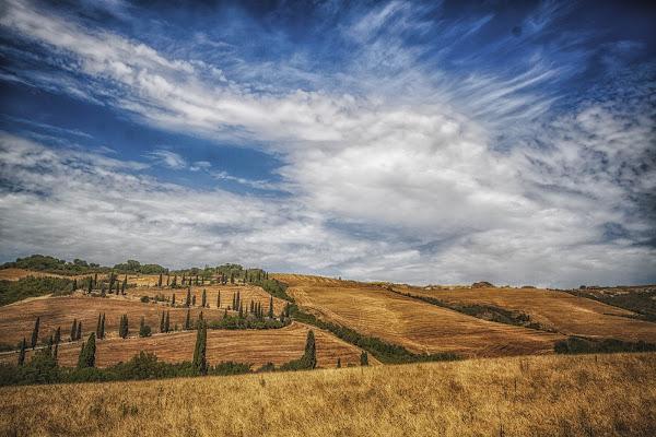Campi pennellati di Alessandro Zaniboni Ph