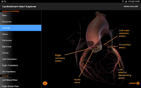 CardioSmart Heart Explorer- screenshot thumbnail