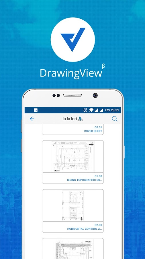 Punch List & Construction Plan- screenshot