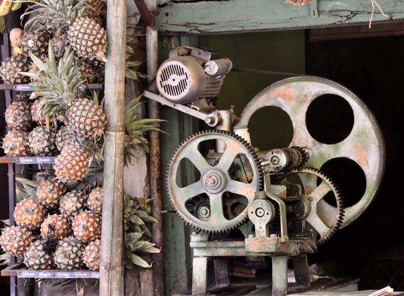 Tropical gears di jonathan85