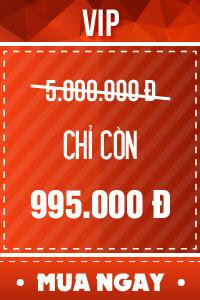 Vé VIP - 995,000 đ