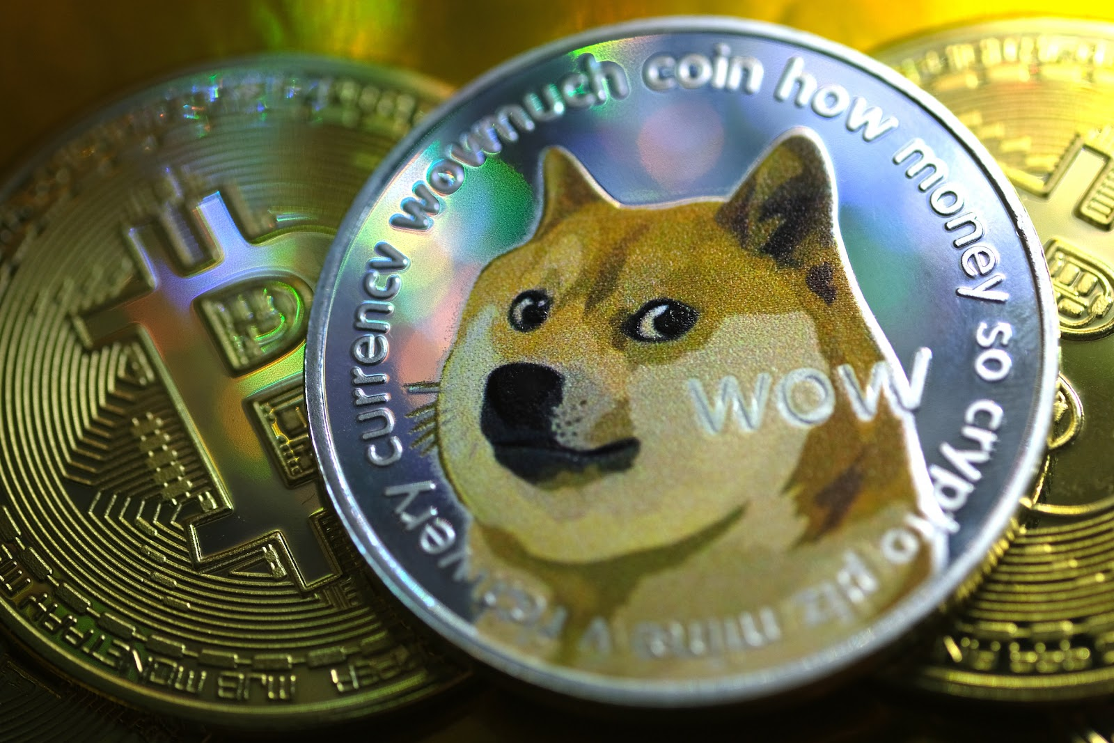 The DogeCoin cryptocurrency is gaining popularity very fast