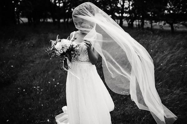 Свадебный фотограф Дмитрий Шумеев (wedmoment). Фотография от 17.08.2017