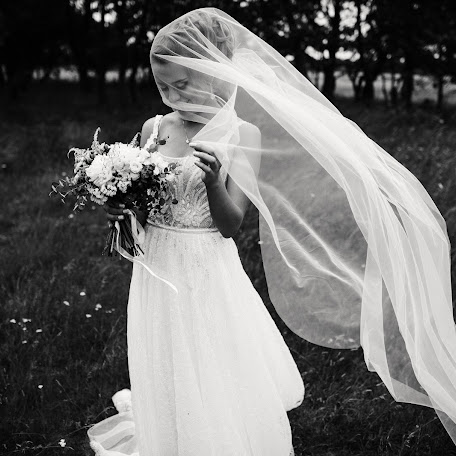 Wedding photographer Dmitriy Shumeev (wedmoment). Photo of 17.08.2017