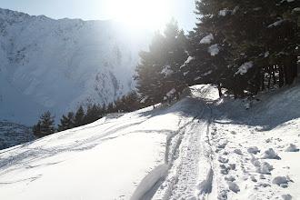 Photo: Lengvoji pasivaikščiojimo dalis.   An easy part to hike.