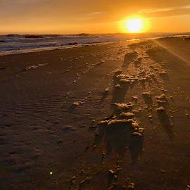 Foam in the Sun by Barry Lehman - Landscapes Sunsets & Sunrises ( foam, beach, sunset, landscape )