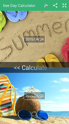 Day Calculator Pro