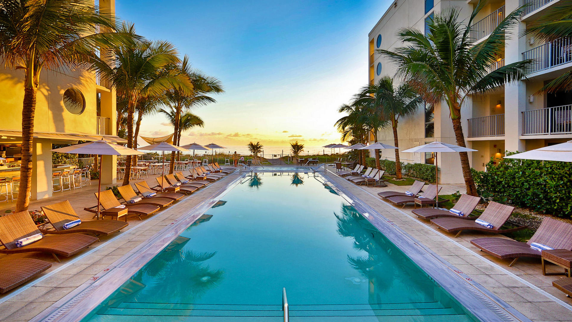dog friendly places in florida hotels