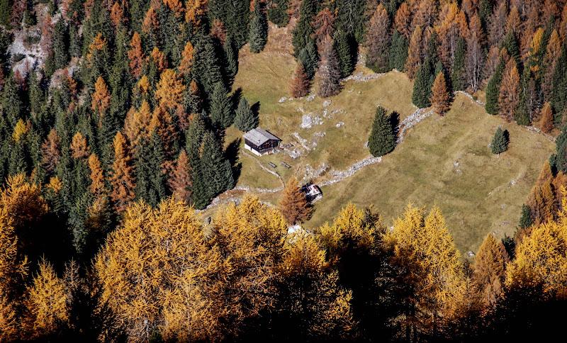 Colori dell'autunno dall'alto di ringhio