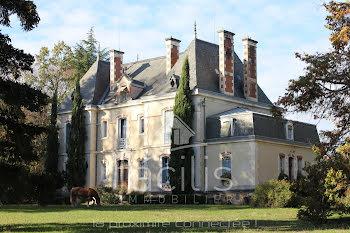 château à Cerilly (03)