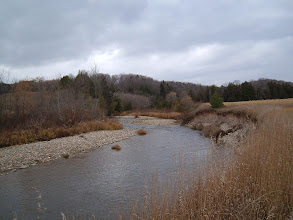 Photo: Mad River Section