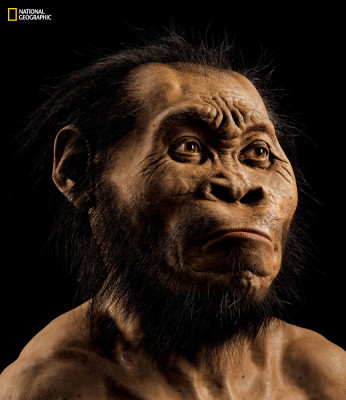 Homo Naledi as brought to life by National Geographic