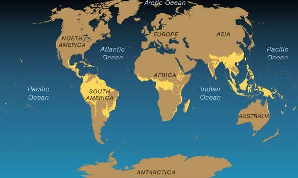 MrOgren   Tropical Rainforest World Map