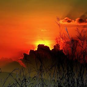 Sun behind dark clouds and long grass by Syafriadi S Yatim - Landscapes Sunsets & Sunrises